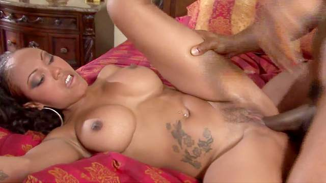 Lacey Duvalle, Jada Fire, Sinnamon Love, Misty Stone, Dominique Pleasures, Lacy Duvalle, Lacey Tom